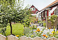 Blommande tradgard i Ostra Karup.jpg