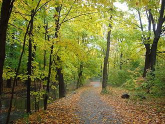 Markland Wood - Bloordale Park is a municipal park in Markland Wood