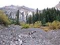 Blowout below Potosi Peak, San Juan Mountains, looking N, Ouray Co, CO, USA - panoramio.jpg