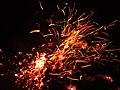 Bonfire Sparks.jpg