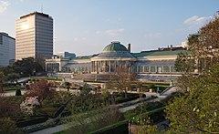 Botanischer Garten von Brüssel während der goldenen Stunde (DSCF8171) .jpg