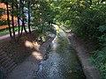 Botič, z mostu ulice U vršovického nádraží, po proudu.jpg