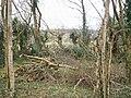 Bottom of Llanteg Old School Garden - geograph.org.uk - 1179714.jpg