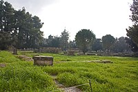 Bouleuterion in Olympia 2010 2.jpg