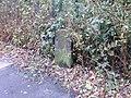 Boundary Stone - geograph.org.uk - 997542.jpg