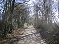 Bovingdon, Holly Hedges Lane - geograph.org.uk - 132218.jpg
