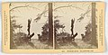 Box Of Stereoscopic Views, Thirty-Six Selected Haynes Stereoscopic Views of the Yellowstone National Park, 1881–88 (CH 69112961).jpg