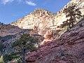 Boynton Canyon Trail, Sedona, Arizona - panoramio (103).jpg