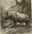Brehm's Life of animals - a complete natural history for popular home instruction and for the use of schools (1895) (20225147550).jpg