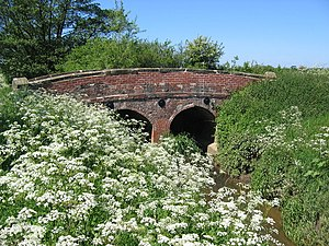 River Foss - Image: Bridge Over the River Foss geograph.org.uk 181250