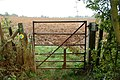 Bridleway to Southam Holt (3) - geograph.org.uk - 1497123.jpg