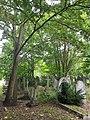 Brockley & Ladywell Cemeteries 20170905 104853 (47638335311).jpg