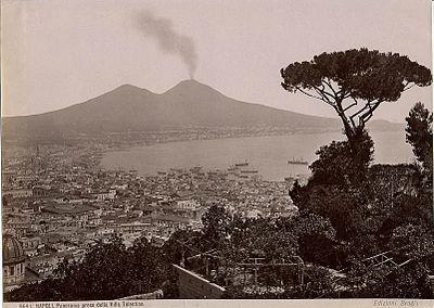 Brogi, Giacomo (1822-1881) - n. 5691 - Napoli - Panorama preso dalla Villa Tolentino.jpg