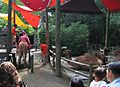 Bronx Zoo 004.jpg
