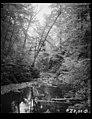 Buck Hill Falls, PA LCCN2016878223.jpg