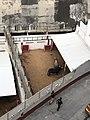 Bulls resting - La Plaza Mexico.jpg