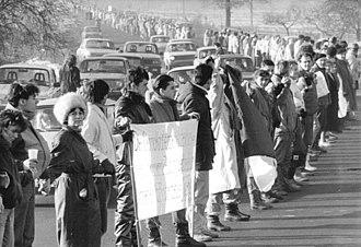 Bundesstraße 6 - Die Wende 1989: Human chain along the F6 in Dresden-Bühlau