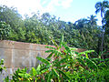 Bunker Mangareva 2006.jpg