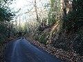 Bysing Wood Road looking towards Luddenham - geograph.org.uk - 1058809.jpg