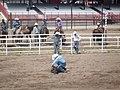 CFD Tie-down roping Trey Young -2.jpg