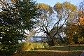 CHOSZCZNO - panoramio (265).jpg