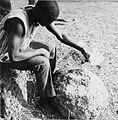 COLLECTIE TROPENMUSEUM Een Samo man offert een kip tijdens een ritueel ten behoeve van een voorspoedige bevalling TMnr 20010339.jpg