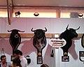 Cabezas de toros 01.jpg