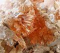 Calcite-Prehnite-kcpr-30b.jpg