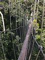 Canopy Walkway - Kakum NP - Ghana14 IMG 0801 (16010569179).jpg
