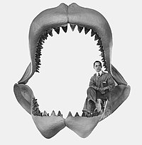 Black-and-white photo of a man sitting inside a megalodon jaw reconstruction.