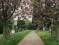 Carlisle Cemetery in May - geograph.org.uk - 902685.jpg