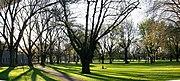 Carlton gardens panorama