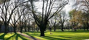 Carlton, Victoria - Carlton Gardens