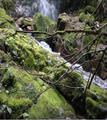 Cascadas Cabogana en la parroquia Sayausí 2.png