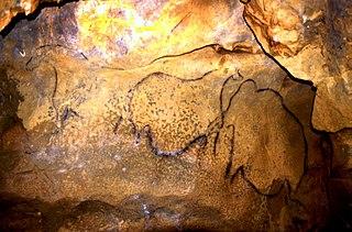 grotte Mayenne-Sciences