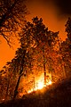 Cedar Fire - huge fire at night.jpg