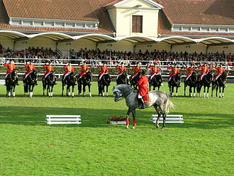 Celle State Stud - This exhibition of black and dark bay stallions is part of the annual Celle Stallion Parade.