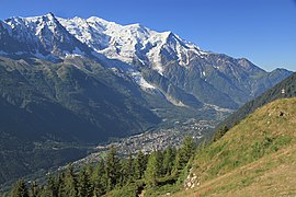 The Chamonix valley seen frae la Flégère