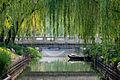 Changpuhe Park.jpg