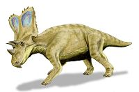 Illustration av Chasmosaurus.