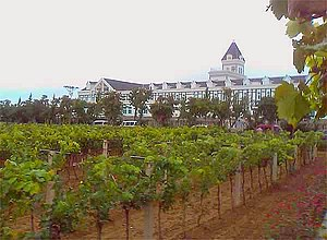 Wine in China - Chateau Changyu, Beiyujia Vineyards, Shandong China