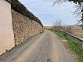 Chemin Chaneau - Solutré-Pouilly (FR71) - 2021-03-02 - 2.jpg