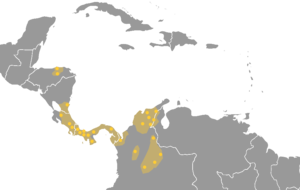 U'wa people - Map of Chibcha languages; the U'wa represent the easternmost yellow dot