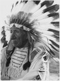Chief Red Cloud in headress - NARA - 285465.tif