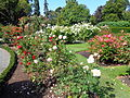 Christchurch Botanic Gardens 04.JPG