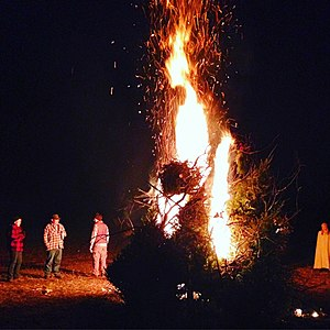 Bonfire - A bonfire of old Christmas trees