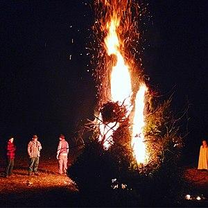 Bonfire - A bonfire of old Christmas trees