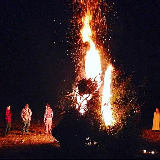 Christmas Tree Bonfire