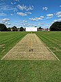 Church Times Cricket Cup final 2019, Wicket 3.jpg