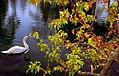 """Cincinnati - Spring Grove Cemetery & Arboretum """"Swan & Berry Tree"""" (3933065744).jpg"""